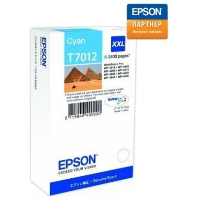 Струйный картридж Epson C13T70124010