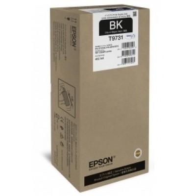 Струйный картридж Epson C13T973100