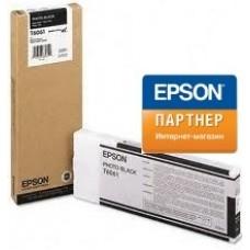 Струйный картридж Epson C13T606100