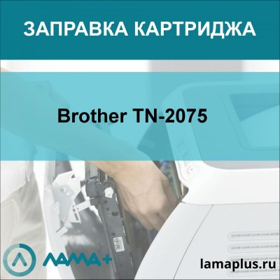 Заправка картриджа Brother TN-2075