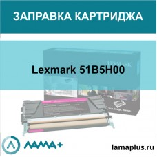 Заправка картриджа Lexmark 51B5H00